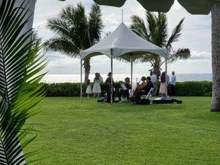 Oahu Strings 1