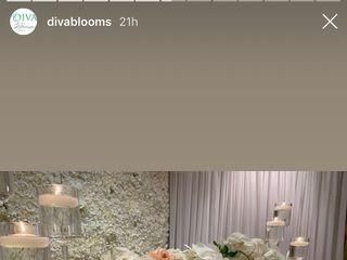 Diva Blooms 4
