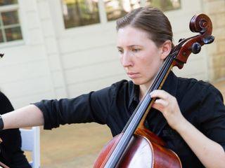 Terra Vista Strings 2