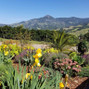 Stepladder Ranch 10