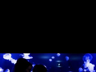 Newport Aquarium 5