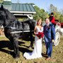 Willow Wind Carriage & Limousine Service 19