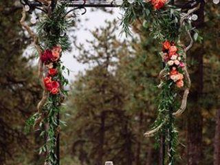 poppy & pine 1