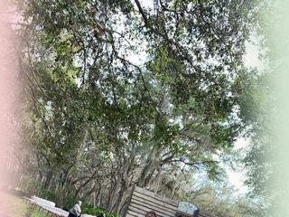 Woods & Weddings 4
