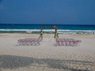 Sandos Playacar Beach Resort 5