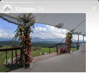12 Ridges Vineyard 1