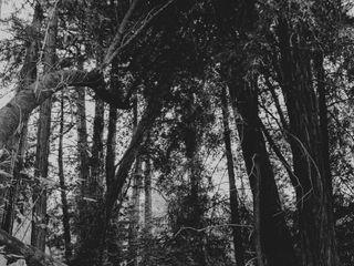 Evynn LeValley Photography 3