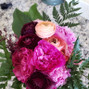 Lovely Peonies 11