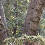 Pine Hills Lodge 48