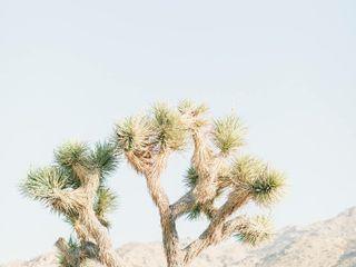 The Desert Lily B&B 4
