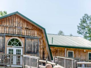 Wolf Oak Acres 7