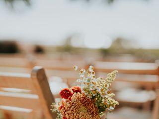 Frampton's Flowers 4