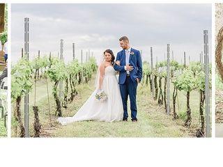 Sanders Ridge Vineyard & Winery 3