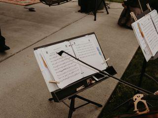 Puget Sound Strings 3