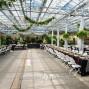 Buchwalter Greenhouse 13