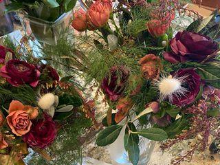 Apiana Blooms 1