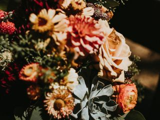 Summer Robbins Flowers 2