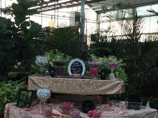 Buchwalter Greenhouse 5