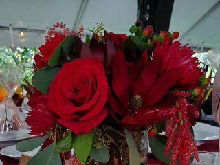 WholeBlossoms.com 4