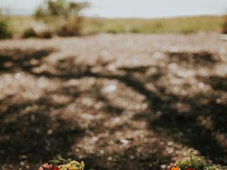 Frampton's Flowers 6