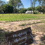 Bridlewood Ranch 19