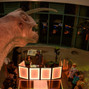 North Carolina Museum of Natural Sciences 17