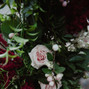 UNITED FLORAL EVENTS 8