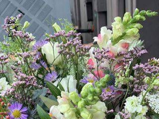 The Flowerman 6