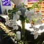 Frampton's Flowers 16