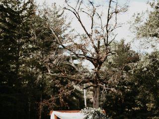 The Honey Tree 2