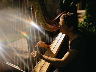 Hudson Valley Harp 1