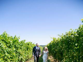 Saltwater Farm Vineyard 5