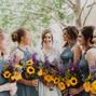 Daylilies Photography 17