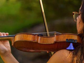Jade Strings 5