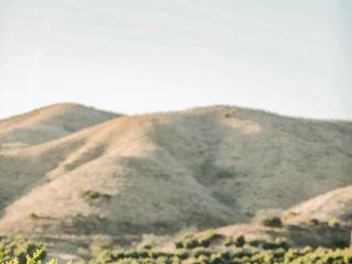 Limoneira Ranch 1