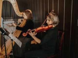 Bethany Evans, Harpist 4