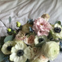 Flor del Monte 8