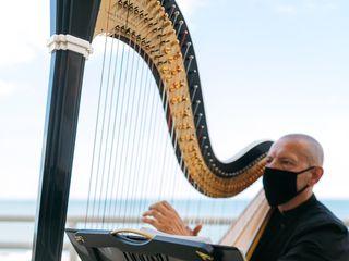 Vince Zentner Harpist 2
