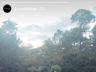 PS Weddings 7