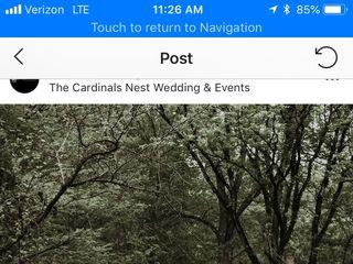 The Cardinal's Nest 4