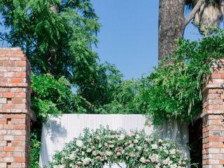 Rockrose Floral Design 4