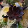 Blooming Vineyards 16