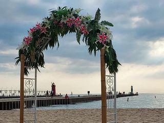 My Barefoot Wedding 3