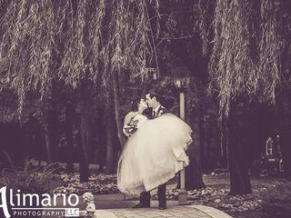 AlimarioPhoto LLC 1