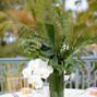 Wildflowers Events & Occasions 7