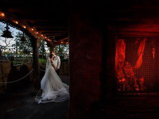 Disney Fine Art Photography & Videography 1