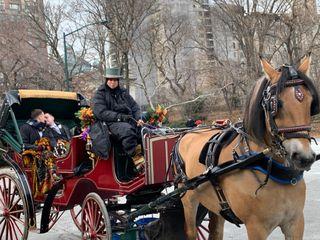 A Central Park Wedding 4