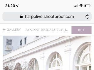 Harp & Olive 3