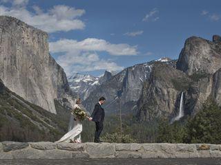 The Redwoods In Yosemite 3