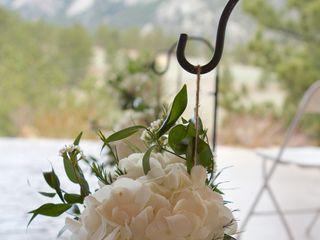 Rocky Mountain Wildflowers 3